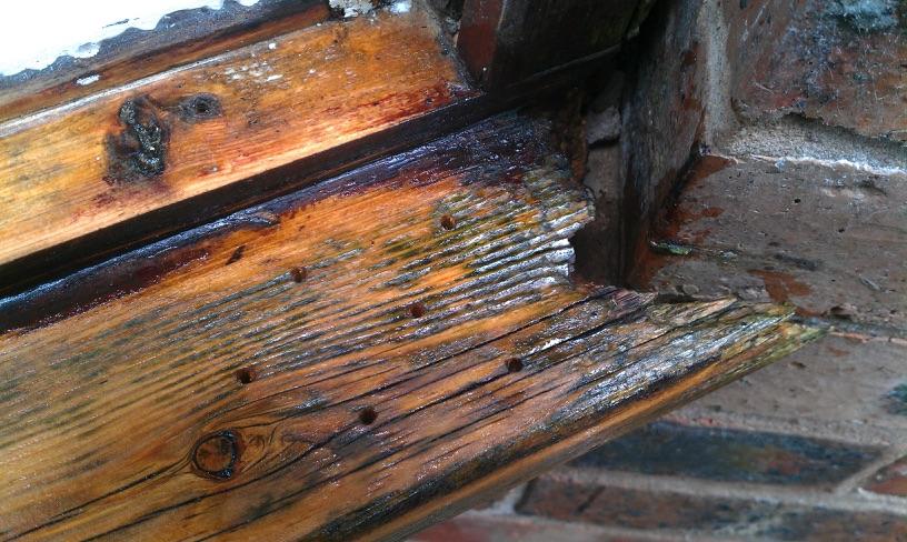 Rotten Wood Repair Alex D